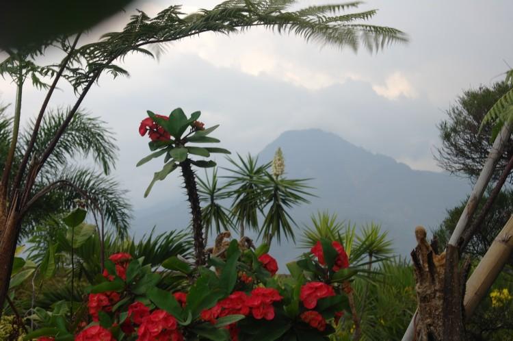 Gunung Sulawesi2